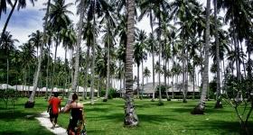 phi-phi-island-village
