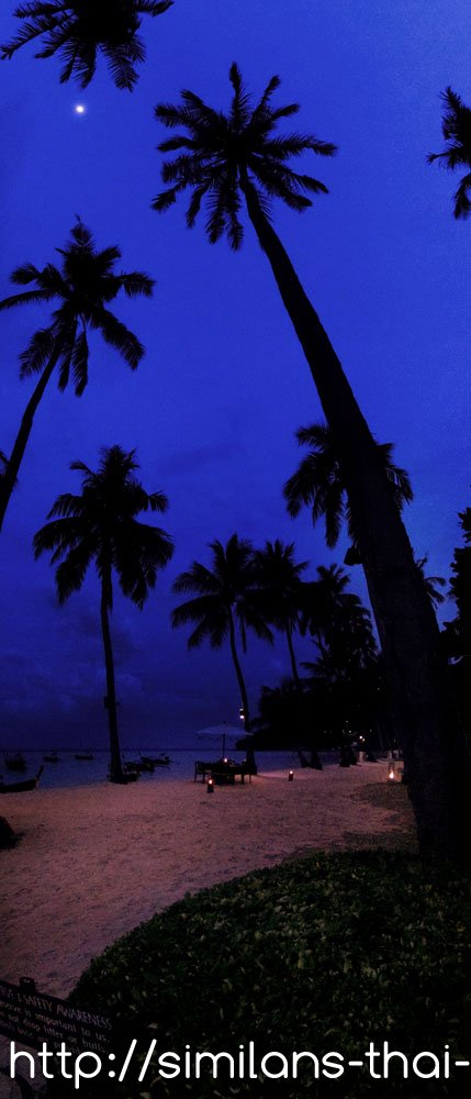 lobagao-beach-phi-phi-don-panorama
