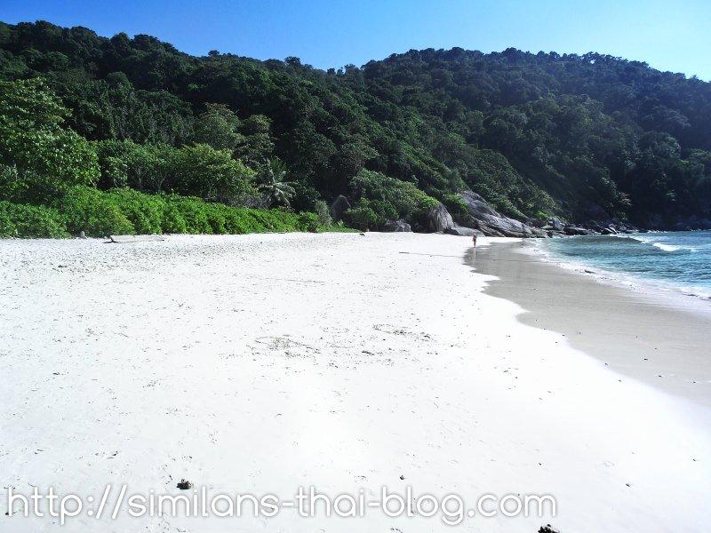 similan_island_nr_8_beach