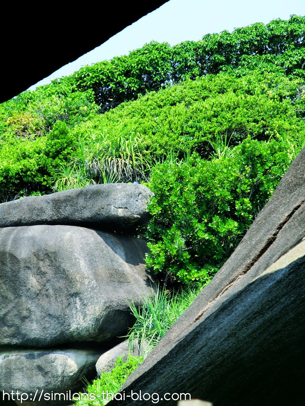 rocks-on-similan-island