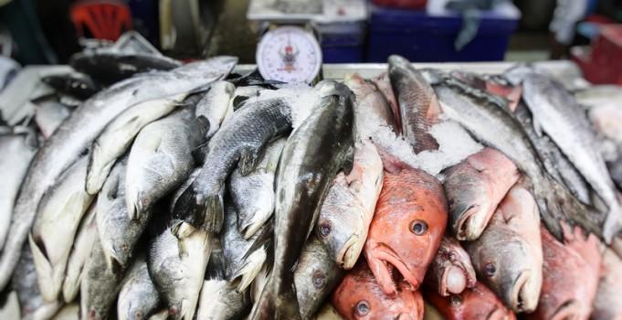 Phuket Town Frischmarkt
