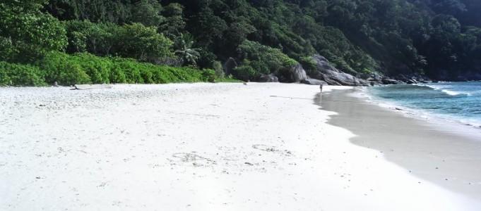 Koh Similan – Paed Island – Insel Nummer 8